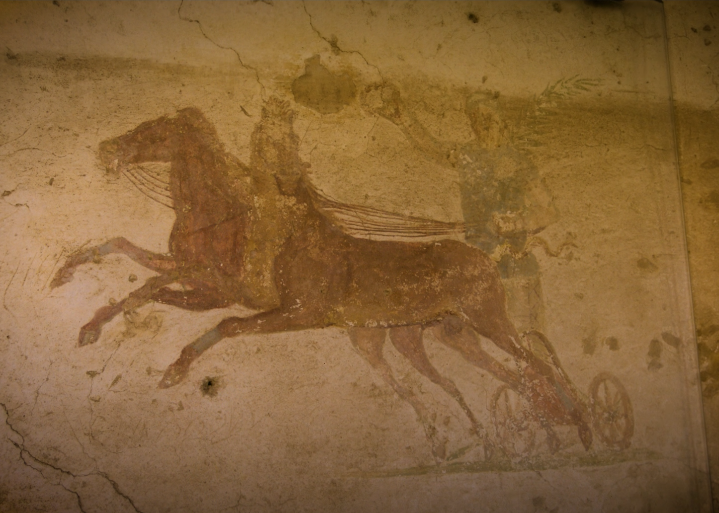 A man on a chariot drawn by two horses going right to left. One horse is turning its head